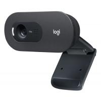 Уеб камера Logitech C505e - BLK - WW
